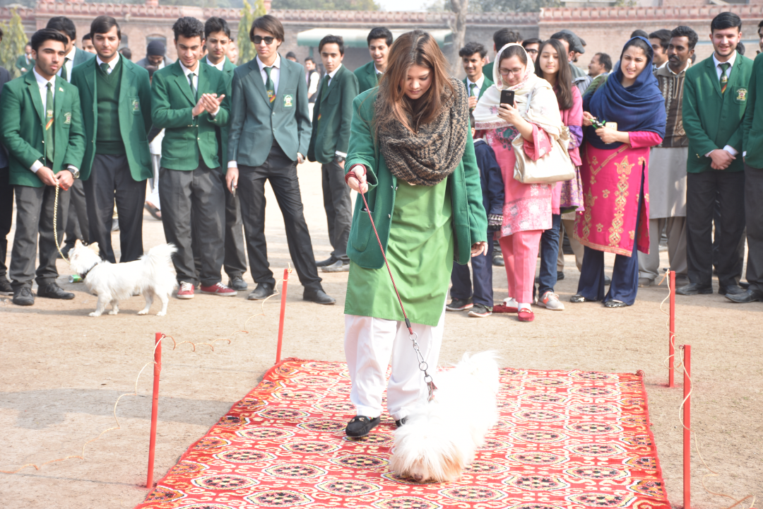 Pet Show Edwardes College Peshawar | ECP
